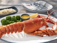 Lobster on a platter