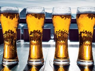 Pilsners and american craft lagers are forecast to rebound in popularity.