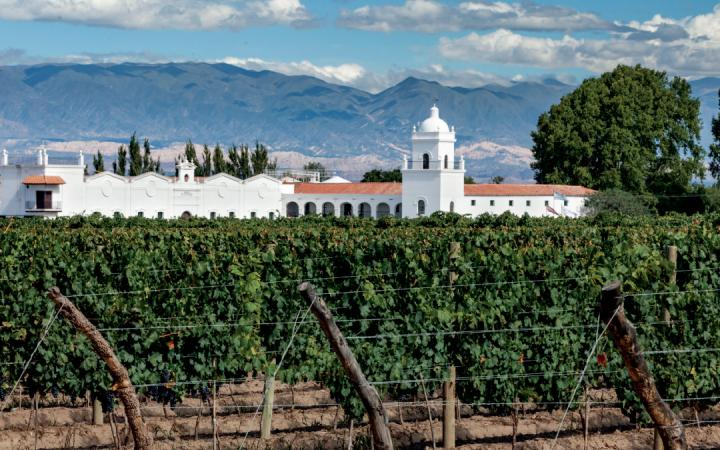 in the northwest of Argentina, wineries like Bodega El Esteco are garnering attention for their Torrentés white wines, as well as Malbec and Cabernet varietals.