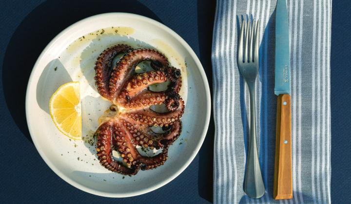 Octopus on a white plate.