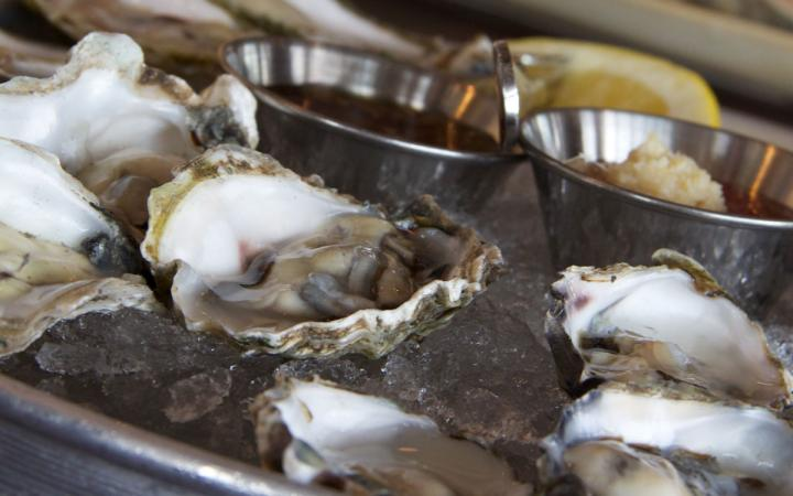 Oysters at Legal Sea Foods, a growing restaurant concept with 36 locations.