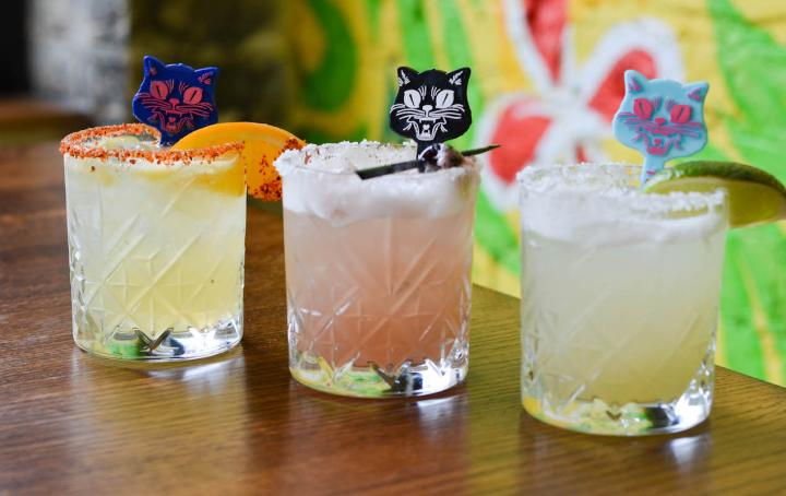 3 margarita glasses with cat stirrers in them