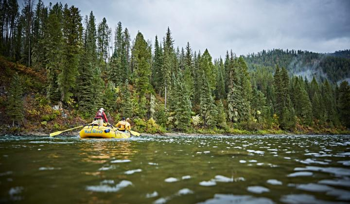 – Top-rated river outfitter Mad River Boat Trips has elevated its highly rated whitewater river-rafting experience..